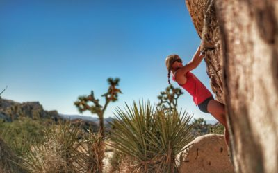 Beginner Rock Climbing in Joshua Tree