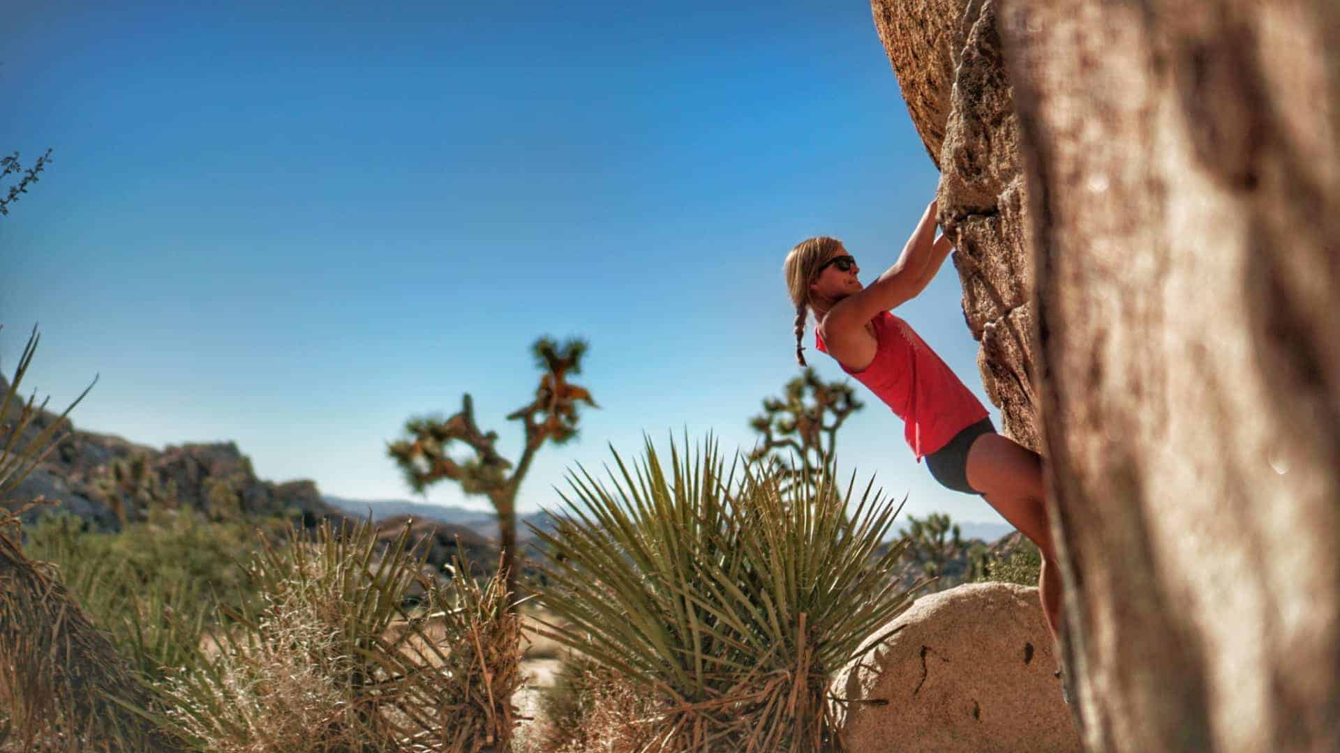 Best beginner climbs in joshua tree national park