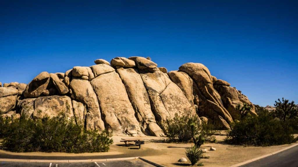 Trashcan Rock Joshua Tree