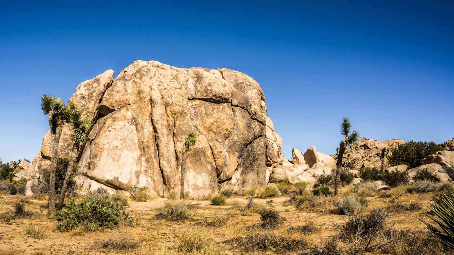 Best-Beginner-climbs-in-joshua-tree-3