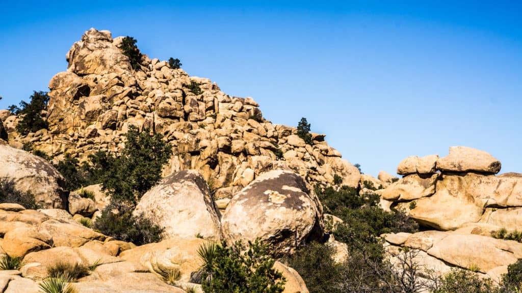 Bouldering in Joshua Tree