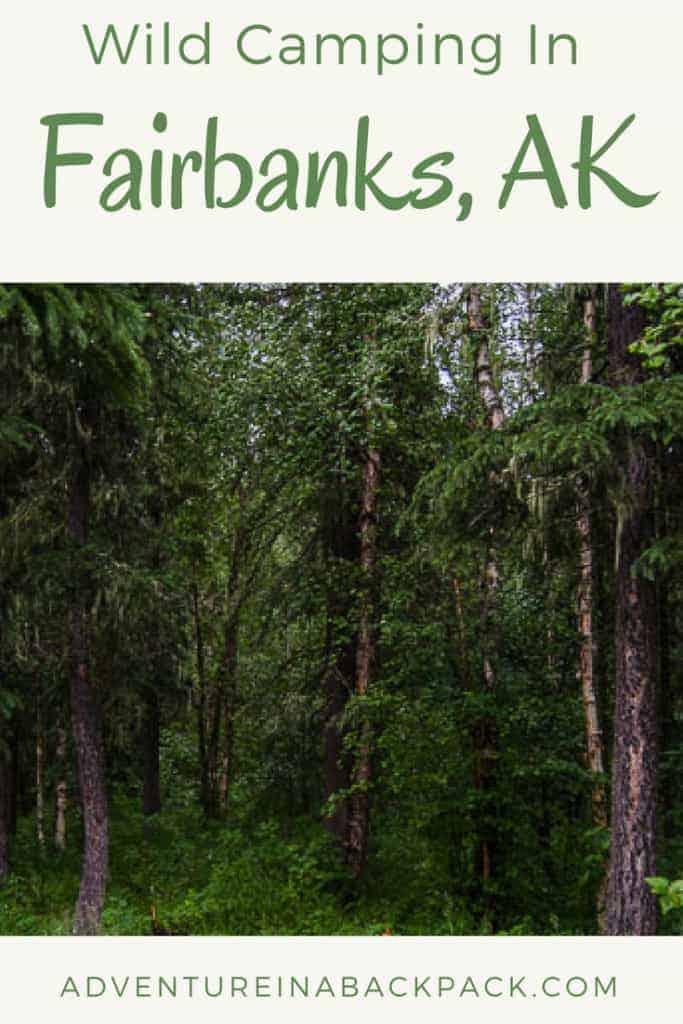 Camping in Fairbanks Alaska