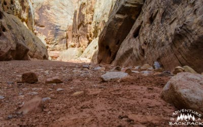 Free Dispersed Campsite near Capitol Reef National Park