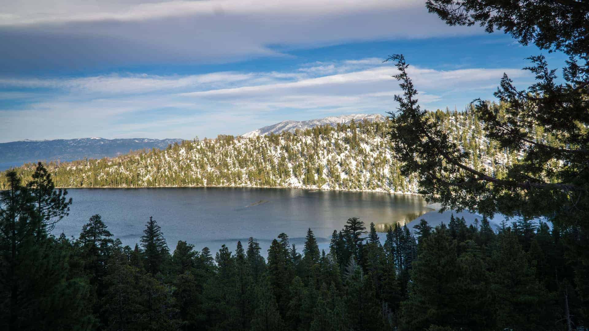 Dog Friendly Hike Near Lake Tahoe-1