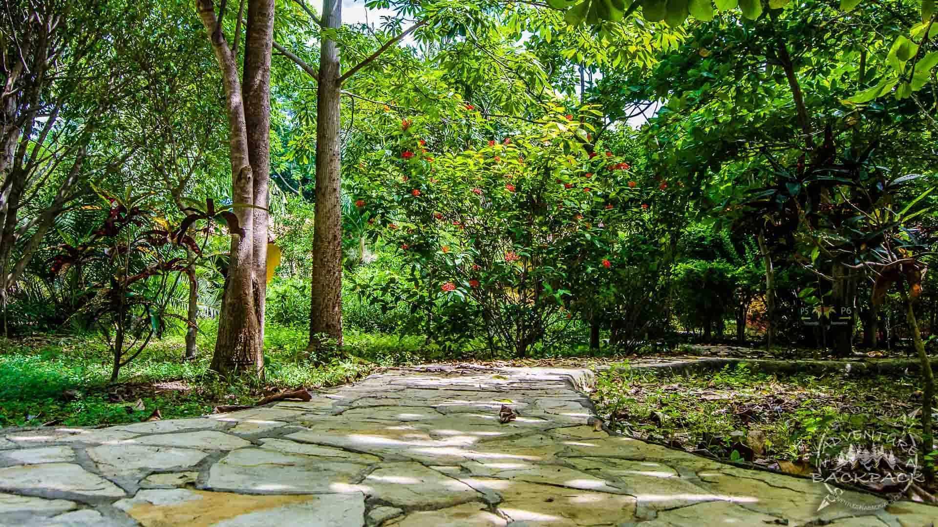 Mango Rosa Resort-1