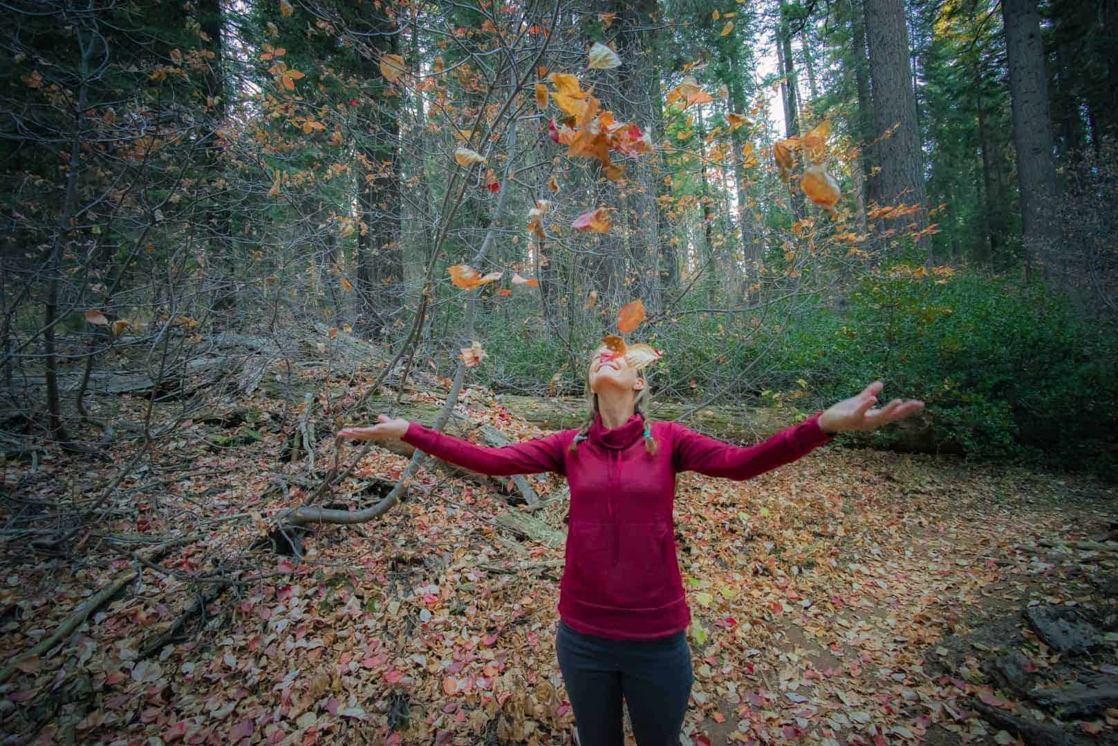 Why you should visit Sequoia National Park in the Fall
