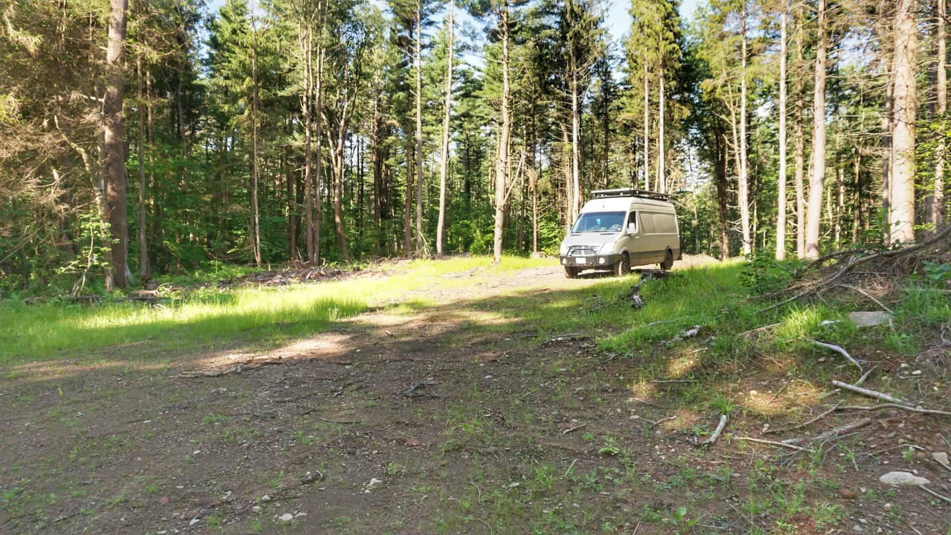 Winona State Forest Primitive Camping