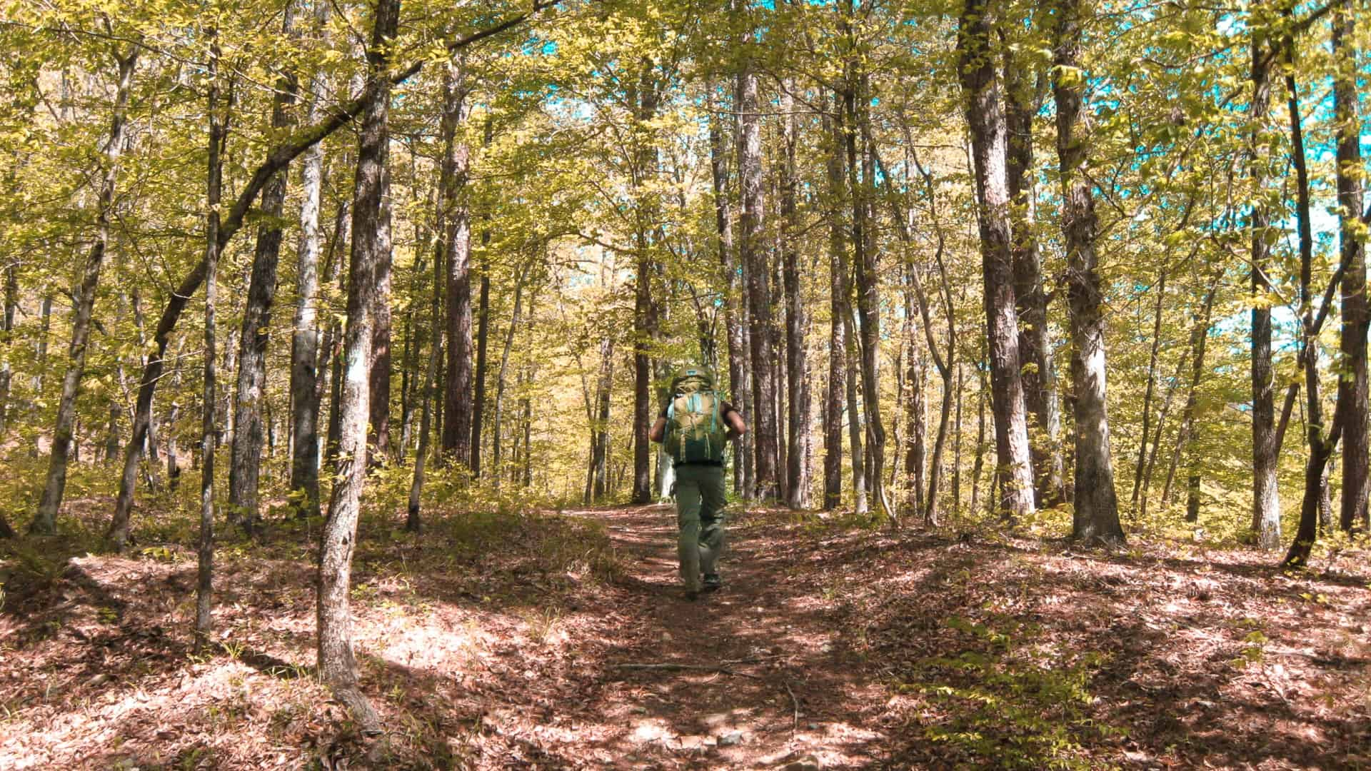 Backpacking Eagle Rock Loop in the Ouachita National Forest, Arkansas