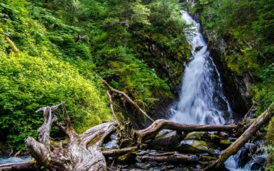 6 Things to Do in Whittier Alaska
